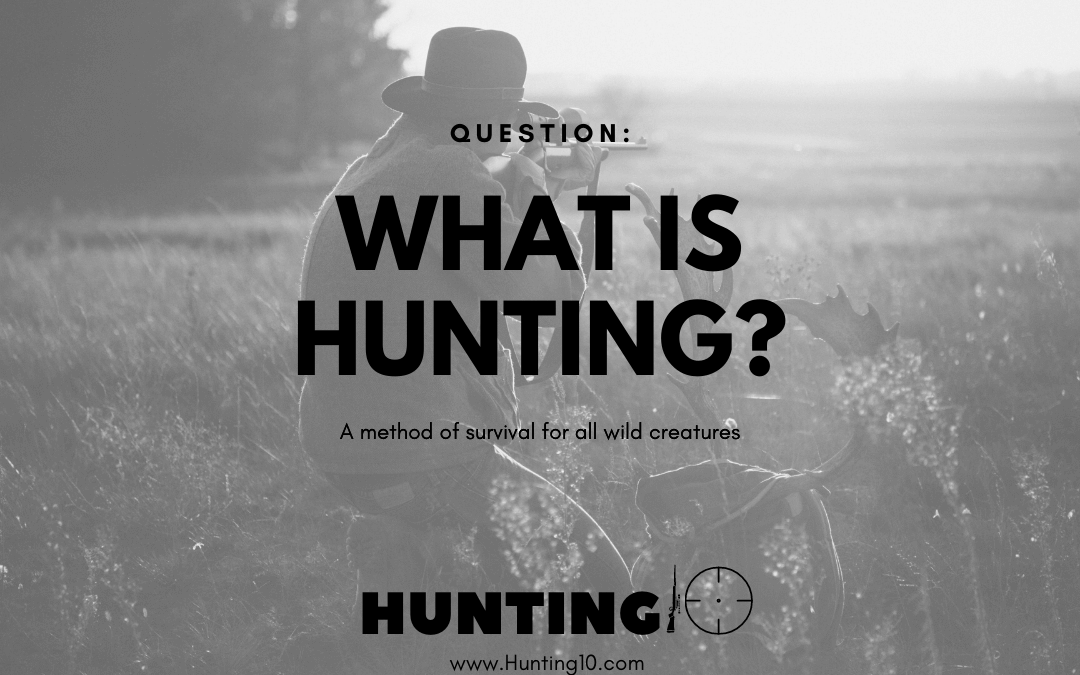 What is Hunting?